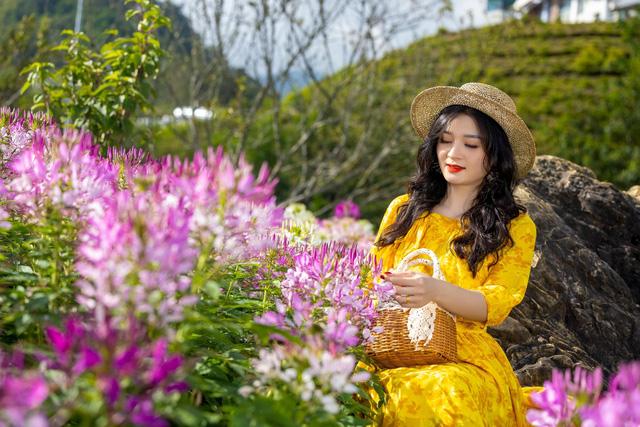 Sắc hoa rực rỡ từ chân núi lên tới đỉnh Fansipan, chỉ ước hết dịch để được xách ba lô lên và đi - Ảnh 8.